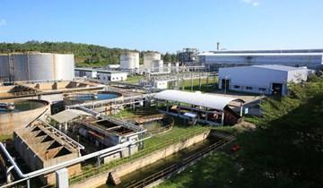 Nhiên liệu sinh học với phát triển bền vững