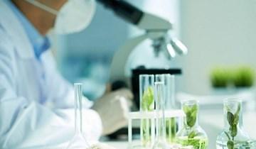 Tinh chế sinh học và nhiên liệu sinh học trong nông nghiệp công nghệ cao
