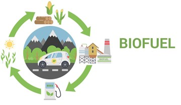 Bình Định: Tập huấn chống khai thác IUU và sử dụng nhiên liệu sinh học