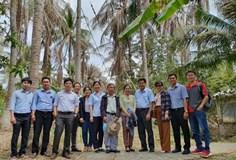 Viện Nghiên cứu Dầu và Cây có dầu hợp tác đào tạo nâng cao kiến thức về cây dừa cho doanh nghiệp