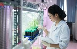 Ứng dụng công nghệ sinh học trong phát triển nông nghiệp
