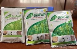 Chế phẩm sinh học phân hủy nhựa cây: Hóa giải thách thức trong sản xuất giấy