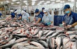 Nghiên cứu xây dựng công thức tạo sản phẩm bột nêm dinh dưỡng từ bột đạm thủy phân phụ phẩm cá tra
