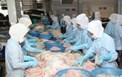 Sở Công Thương Bến Tre nâng cao nhận thức, trách nhiệm về bảo đảm an toàn thực phẩm