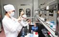 DN dược phẩm trong nước sản xuất thành công TPCN lợi khuẩn từ vi khuẩn Bifidobacterium