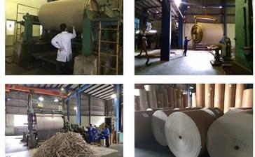 Ứng dụng công nghệ enzyme trong sản xuất giấy bao bì công nghiệp