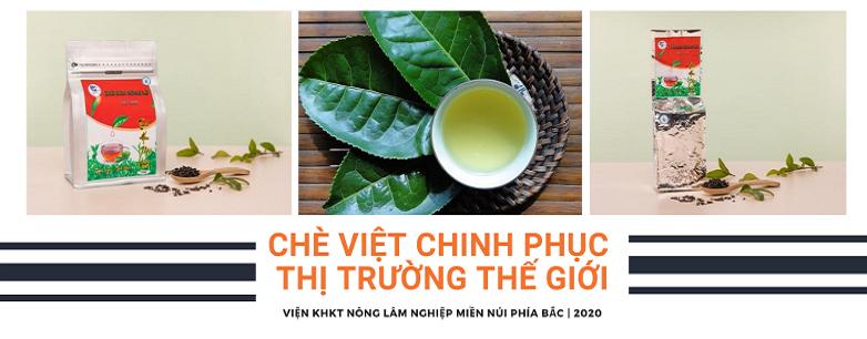 Ứng dụng KHCN vào sản xuất, chè Việt tự tin chinh